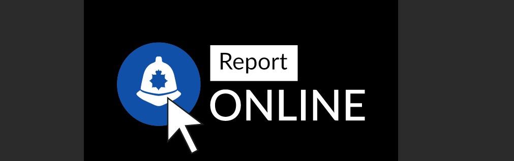 Report online logo
