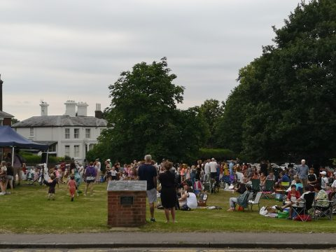 Attendees at Picnic on the Green 2019