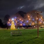 Festive Lights 2020