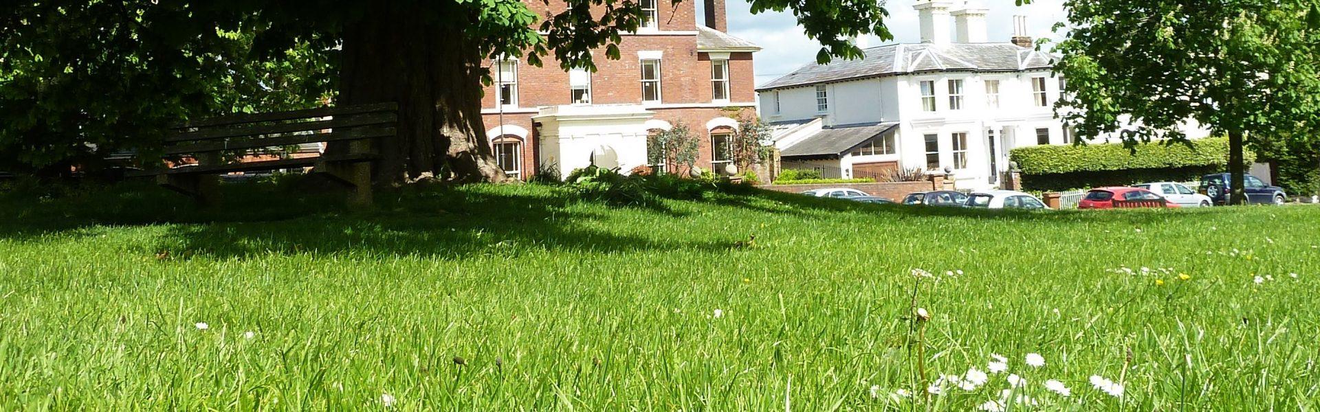 Lower Green